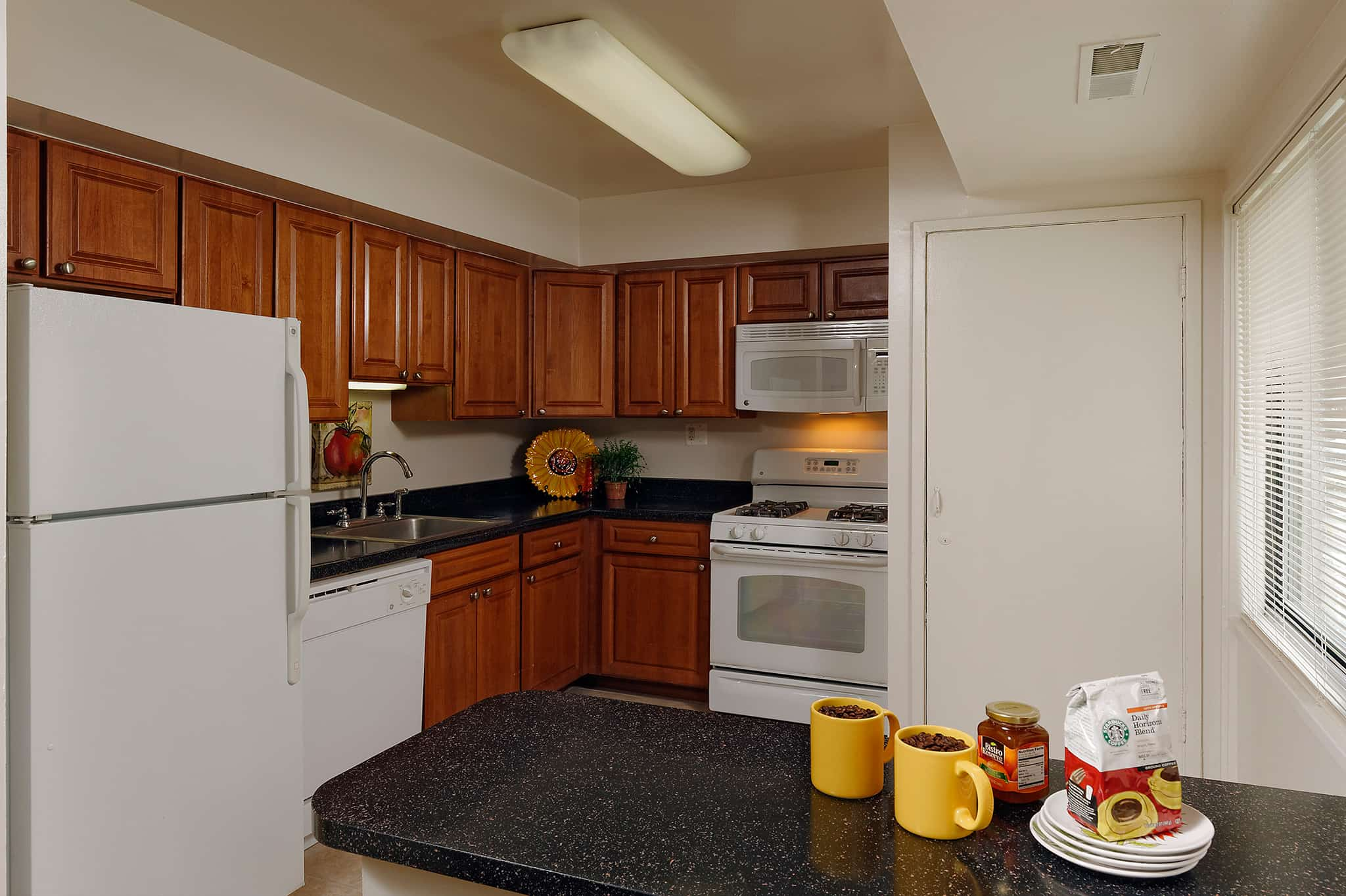 Rollins Park townhome kitchen